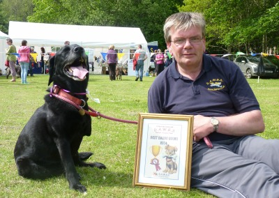 Katy the Labrador- our best in show